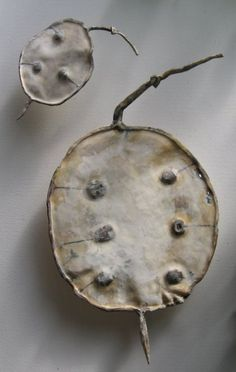 These are carved and painted honesty pod sculptures up to 100cm across . by Liz McAuliffe. www.lizmcauliffe.com