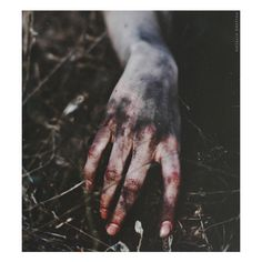 Natalia Drepina ❤ liked on Polyvore featuring images