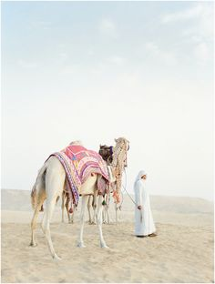 Lace in the Desert {Desert Bridal Inspiration} Vicki Grafton and Rensche Mari Photography Travel Honeymoon Backpack Backpacking Vacation Bridal Session, Bridal Shoot, Abu Dhabi, Camelus, Desert Resort, Desert Life, Film Images, Morocco Travel, North Africa