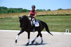 10-Meter Circles Deconstructed~Circles are a geometric challenge in dressage that, when mastered and well-ridden, can set the stage for a beautiful test. If ridden well, a circle will supple the horse and prepare him for movements