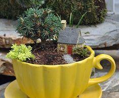 Little garden House - Countryside Gnome Micro House Micro Garden, Mini Fairy Garden, Gnome Garden, Fairy Gardening, Gardening Zones, Gardening Vegetables, Hydroponic Gardening, Indoor Gardening, Miniature Plants