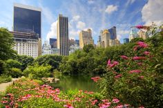 The Pond in Central Park, Manhattan, NYC ~ April 6, 2007 by Wolfgang Staudt | Flickr - Photo Sharing!