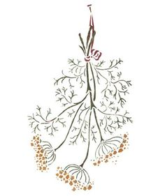 Hanging Dill Herbs Wall Stencil by DeeSigns