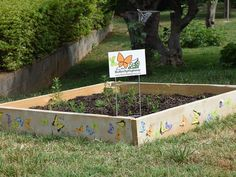 The Butterfly Highway is a statewide conservation restoration initiative that aims to restore native pollinator habitats to areas impacted by urbanization. Flowering Plants, Planting Flowers, Butterfly Park, Splash Pad, Land Use, Garden Photos, Restore, Agriculture, Conservation