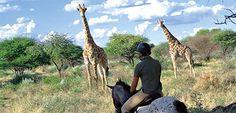 Reitsafaris in Afrika, Kambaku Game Reserve Namibia