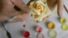 The second video in my Sugar Rose video tutorial series: Finishing. Here I cover adding a calyx, layering dusts for color, steaming, and adding leaves.
