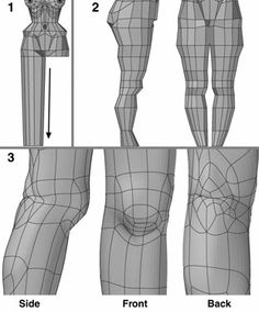 Leg Steps 1 to Beveling down the leg poly- gon. Slicing across the leg and shaping it. Dividing the polygons and moving points at and behind the knee. 3d Model Character, Character Modeling, 3d Human, Human Body, 3d Face Model, Face Topology, Human Anatomy, Face Anatomy, Anatomy Study