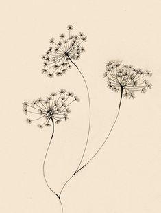 flower 3 by lindzb.deviantart.com on @deviantART
