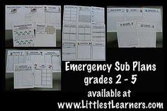 Emergency Sub Plans grades 2-5