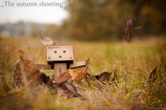 https://flic.kr/p/axdMn5 | The autumn shooting | Day 292 - The autumn shooting  Two days earlier, Oliver and I wanted to make an autumn photo. We were disturbed by the earthworm... Today we were out again in a short rain break. And here it is :) Do you like it? Follow me on my facebook-site: www.facebook.com/Peppi365   Zwei Tage zuvor wollten Oliver und ich ein Herbstfoto machen. Dabei wurden wir von dem Regenwurm gestört... Heute waren wir in einer kurzen Regenpause noch einmal draussen…