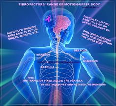 FIBROMYALGIA NOW CONSIDERED AS A LIFELONG CENTRAL NERVOUS SYSTEM DISORDER – How To Cure It?
