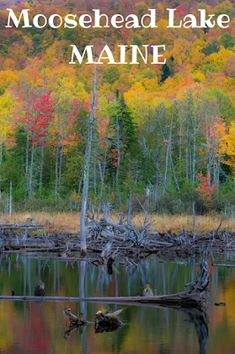 Travel the World: The best things to do in Moosehead Lake Maine in any season of the year. Maine Road Trip, Camping In Maine, East Coast Road Trip, Road Trips, Grand Canyon Camping, Yosemite Camping, Vacation Destinations, Vacation Spots, Italy Vacation