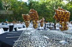 KNP - Berg-en-Dal - Lapa South African Holidays, B & B, Catering, Table Decorations, Catering Business, Gastronomia, Dinner Table Decorations