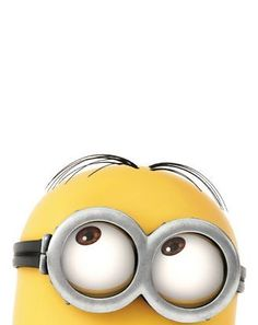 minion // despicable me - looks above counter Minion Rock, Minions Images, Cute Minions, Minions Despicable Me, Minions Quotes, Minions 2014, Minion Humor, Yellow Guy, Minion Mayhem
