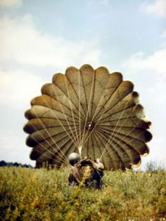 A paratrooper who just landed pulls in his parachute Army Baby, 101st Airborne Division, Paratrooper, Colorful Pictures, World War Two, Wwii, The Past, Lion Sculpture, Navy Gear