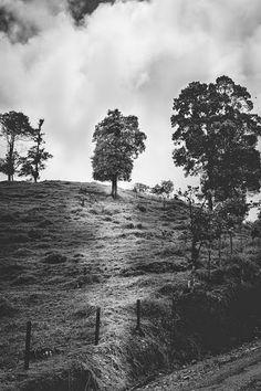 #blackandwhitephotography - Google+ Black And White Photography, Photo Art, Country Roads, Explore, Outdoor, Google, Black White Photography, Outdoors, Exploring