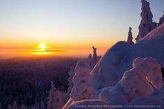 sunset at Koli national park in North Karelia, Finland.