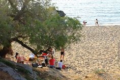 Agioi Apostoloi beach, early on a Summer evening, fragrant with the scent of the sea and the beach tree!