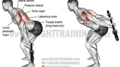 Bodybuilding Training, Bodybuilding Workouts, Muscle Fitness, Fitness Tips, Fitness Motivation, Video Fitness, Fitness Style, Gym Workout Tips, Fit Board Workouts