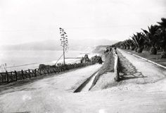 "The California Incline in Santa Monica, circa 1910s -  only one automobile in sight!  And look at how short those palm trees are! At the time, the California Incline was called ""Sunset Trail"" which was how the locals got from Ocean Ave down to (what we now call Pacific Coast Highway) to get to Santa Monica beach to take in the sunset."