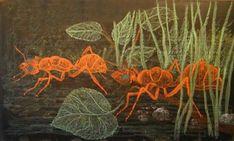 Chalkboard Drawings, Chalkboard Lettering, Chalk Drawings, Classical Education, Art Education, Waldorf Education, European History, History Medieval, Medieval Times