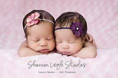 Newborn Headband Hydrangea Flower Headband Beautiful Simple Newborn Photo Prop Many Colors Available. $8.00, via Etsy.