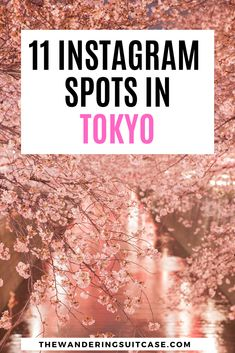 Instagrammable places in Tokyo, Japan | Instagram spots in Tokyo | Photographic places in Tokyo | Places to go in Japan | influencers in Japan | Things to do in Japan via @wanderingsuitca