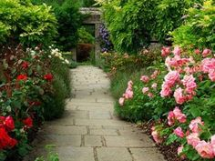 Garden And Lawn , Beautiful Garden Design With English Rose : Beautiful Garden Design English Rose With Concrete Walkway Small English Garden, English Country Gardens, Atrium Design, Rose Garden Design, Concrete Walkway, Natural Fence, Stone Path, Garden Deco, Garden Pictures