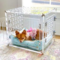 Petite Pretty Kennel ships in 3 weeks Grooming Salon, Pet Grooming, Dog Furniture, Container Store, Cat Supplies, Pet Carriers, Single Doors, Dog Crate, Handmade Wooden