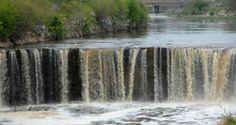 La policía rescató a un hombre que se había caído al arroyo Saladillo y se estaba ahogando – Panorama Rosario