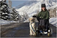 Love this story on being matched with a service dog from Canine Companions for Independence.