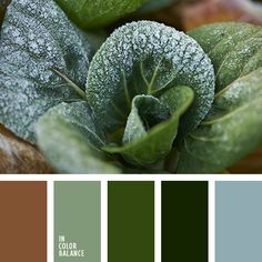 Natural colors. These natural colors associated with lush foliage, grass, forest, soil. They soothe, lead to equilibrium, harmonize the mind and space. Emerald, dark green, mint - perfect base colors to create a comfortable interior. Light brown and blue-gray help complete the design, making it fresh and enjoyable.
