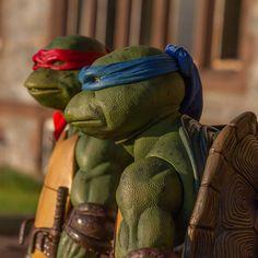 Ninja Turtle Drawing, Acton Figure, Ninga Turtles, Superhero Villains, Manga Games, Toys Photography, Teenage Mutant Ninja Turtles, Tmnt, Marvel Dc