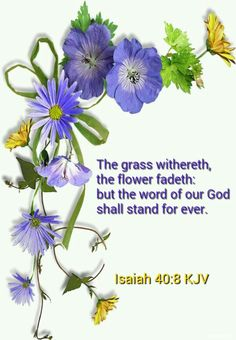 Isaiah 40:8. The grass withereth, the flower fadeth: but the word of our God shall stand for ever.