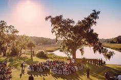 South Carolina Shoe Themed Wedding