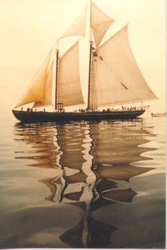A schooner at full sail.