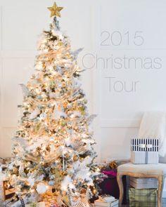 Let's Dazzle Darlings 2015 Christmas Tour