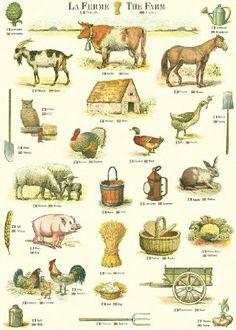 Cavallini La Ferme (The Farm) Wrapping Paper - 20 Vintage Farm, Vintage Ephemera, Vintage Labels, Illustrations, Illustration Art, Farm Yard, Amazon Art, Livestock, Farm Life