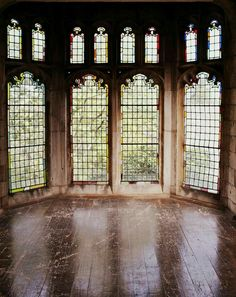 Gorgeous windows - Gothic Castle-style