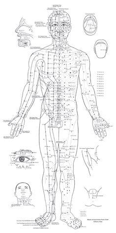 map acupuncture - Cerca amb Google
