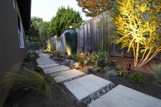 Modern Texas Landscape Design with Pathway