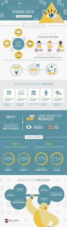 The Big Data vision 2015 #infographic:
