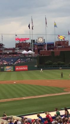 Whoa! Ninja squirrel! World's most epic squirrel dive-bombs into dugout at Phillies game