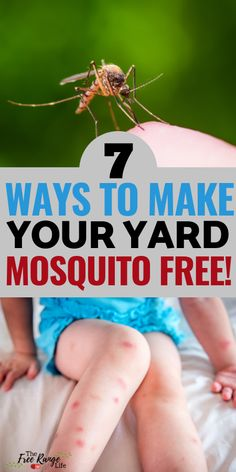 Mosquitoes making summer miserable? Use these 7 Natural Mosquito Repellent ideas to help you get rid of mosquitoes and enjoy being outside more!