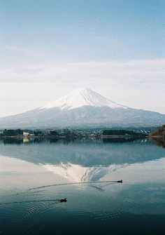 Another view of Mount Fuji shot with a Fuji camera plus two intruders by quinolAs on Flickr.