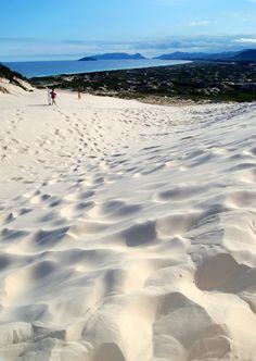 Deserto e praia juntando no mesmo lugar. Paisagem incomparável. Praia Joaquina (Florianopolis)