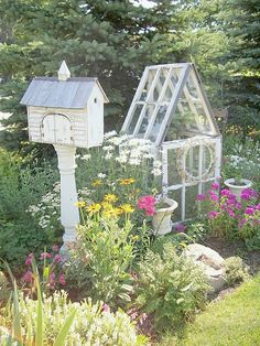 What a darling combo!  Old windows to make a greenhouse and a place for the birds!