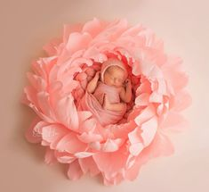 This Newborn Baby Photography Props Baby Boys, Newborn Baby Photography, Photography Props, Photography Flowers, Urban Photography, Newborn Pictures, Baby Pictures, Deco Baby Shower