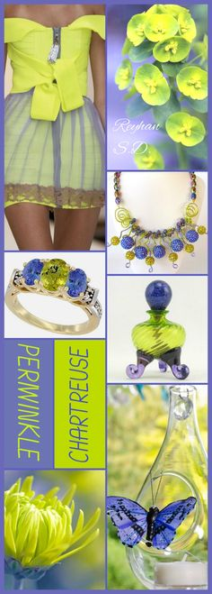 '' Periwinkle & Chartreuse '' by Reyhan S.D.