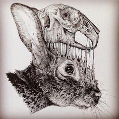Rabbit skull (Instagram: pauljacksonlives)